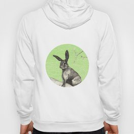 A rabbit Hoody