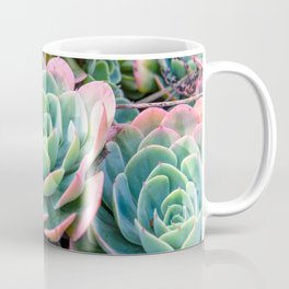 Succulent Garden Vibrant Pastel Coffee Mug