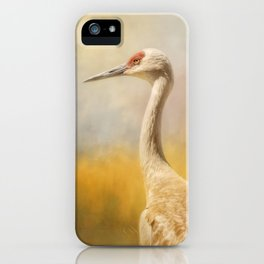 Sandhill At Water's Edge iPhone Case
