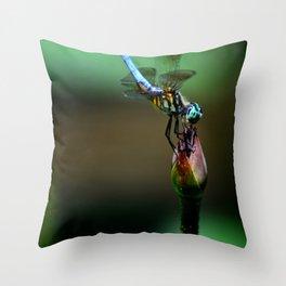 Great Blue Skimmer Throw Pillow