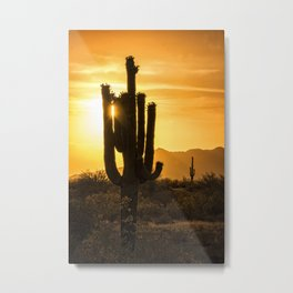 Call It Desert Gold Metal Print