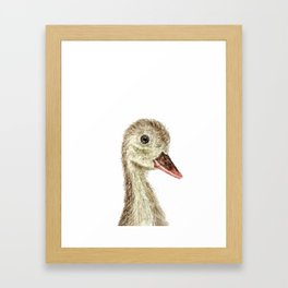smiling little duck Framed Art Print