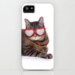 Big Tabby Cat in Heart Glasses iPhone Case