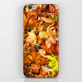 Leaves & colours iPhone Skin