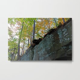 Harrowing Journey Metal Print