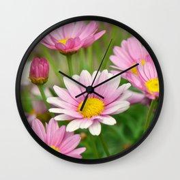 Daisy pink 090 Wall Clock