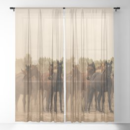 Wild Horses 6587 - Northwestern Nevada Sheer Curtain