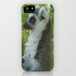 Julien iPhone Case
