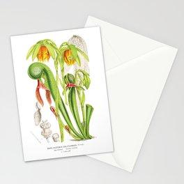 Cobra Plant (Darlingtonia Californica) Stationery Cards