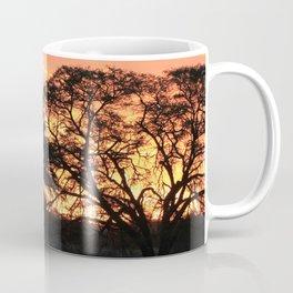 Beautiful Africa Sunset with Silhouette Acacia Trees Coffee Mug