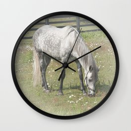 A White Horse in a pasture among Daisy Flowers Wall Clock