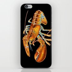 Maine Lobster iPhone & iPod Skin