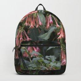 Longwood Gardens - Spring Series 252 Backpack