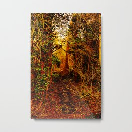 Winter forest stream Metal Print