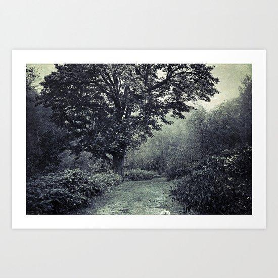 Pathway of Life Art Print