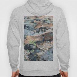 Mossy Granite Hoody