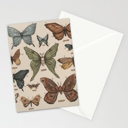 Butterflies and Moth Specimens Stationery Cards