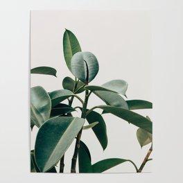 Botanical V2 Poster