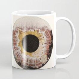 Iris Colors Coffee Mug