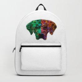 Season Dog Backpack