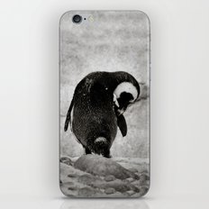 The Little Penguin that Could  iPhone & iPod Skin