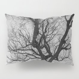 Nature Photography Weeping Willow | Lungs of the Earth | Black and White Pillow Sham