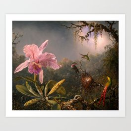 CATTLEYA ORCHID AND THREE BRAZILIAN HUMMINGBIRDS - MARTIN JOHNSON HEADE Art Print