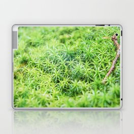 Forest of moss Laptop & iPad Skin