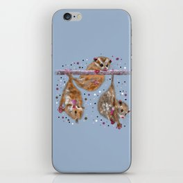 Possum trio on a branch - Blue Grey iPhone Skin