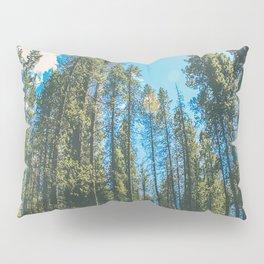 Follow the Forest Pillow Sham