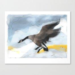 Canada Goose Landing...digital sketch Canvas Print