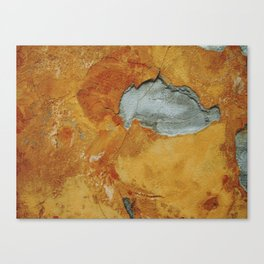 Tangerine wall Canvas Print