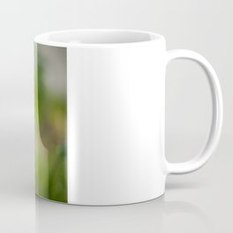 Peachy poppy Coffee Mug