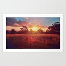 Park Sunset Art Print