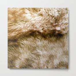 Fluffy Fur Metal Print