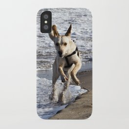 Flying Dog - Catania Beach - Sicily iPhone Case