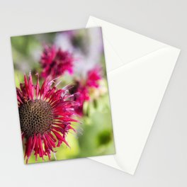 Not Yet Faded Stationery Cards