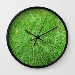 Beautiful Wild Nature - Great Horsetail Wall Clock