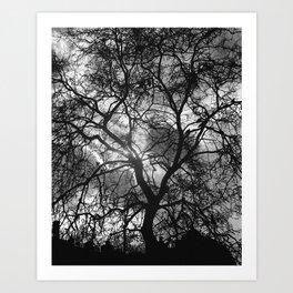 Dramatic London Tree Silhouette Art Print