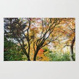 Beautiful Trees / 13 Rug