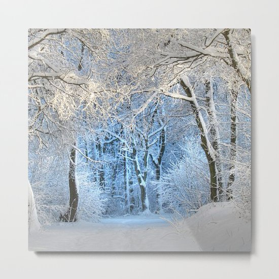 Another winter wonderland Metal Print