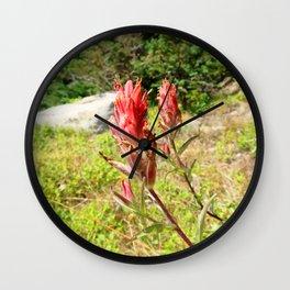 Watercolor Flower, Indian Paintbrush 05, Ute Trail, RMNP, Colorado, Crimson Splash Wall Clock