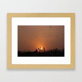 Sun by Snow 1 Framed Art Print