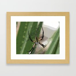 Orb Spider 2 Framed Art Print