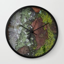 Mossy bark after rain Wall Clock