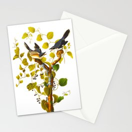 Loggerhead Shrike Bird Stationery Cards