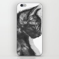 sam smith iPhone & iPod Skins featuring Sam by Aline Blanc