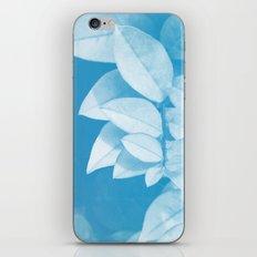 Leaves in Blue iPhone & iPod Skin