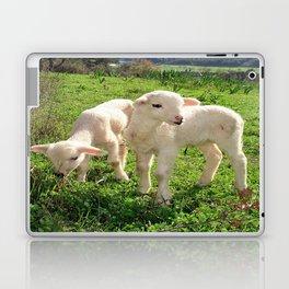 Spring Lambs Grazing On Farmland Laptop & iPad Skin