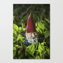 Garden Gnome among Lilies of the Valley Canvas Print